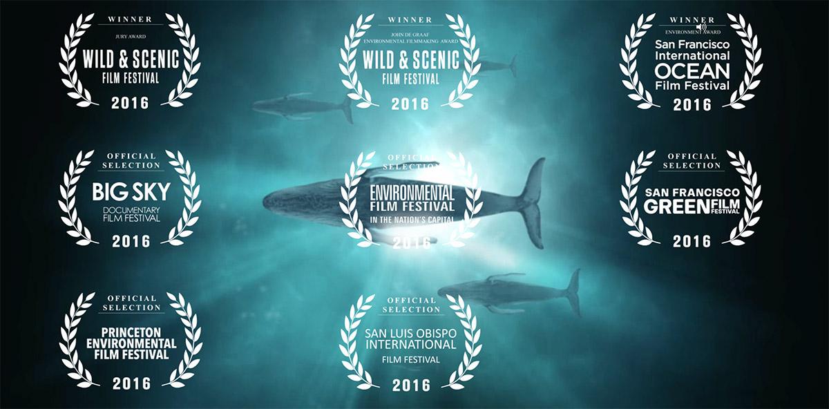 "Rachel Narrates ""Sonic Sea"" Documentary"