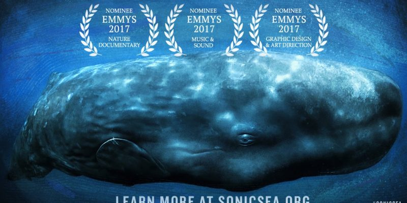 """""""Sonic Sea"""" Wins Two Emmy's!"""