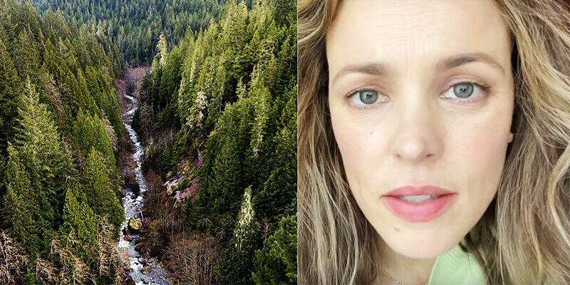 Rachel advocates for Old Growth Forests